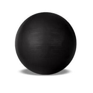 Bola De Pilates Acte Gym Ball 65cm T9-PTO